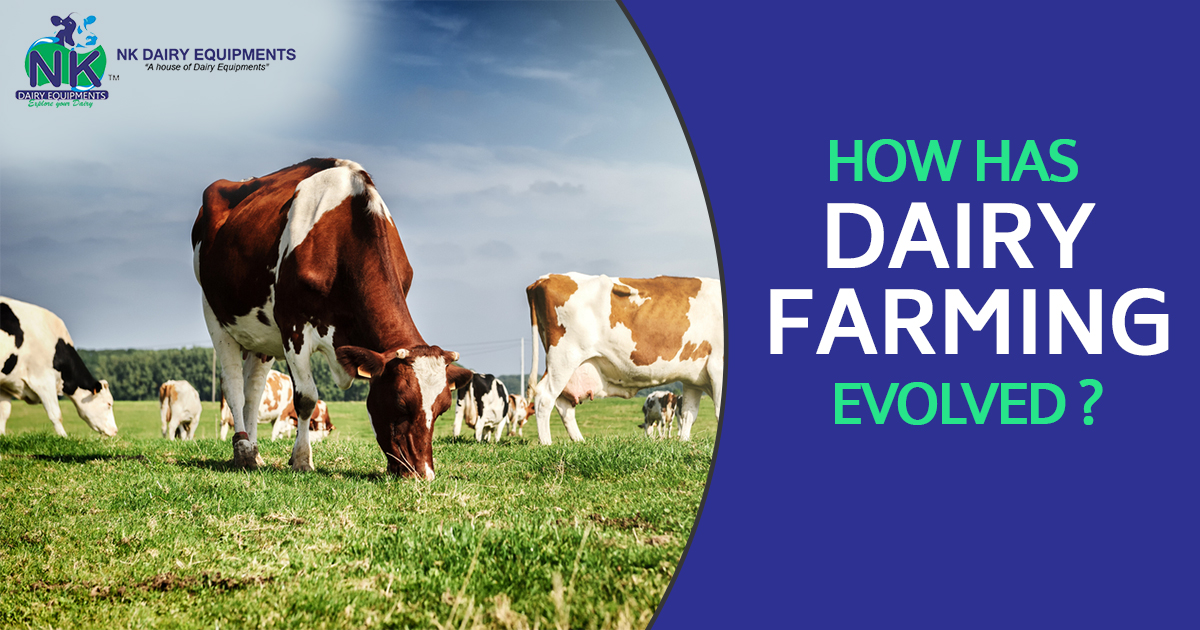 How has Dairy Farming Evolved