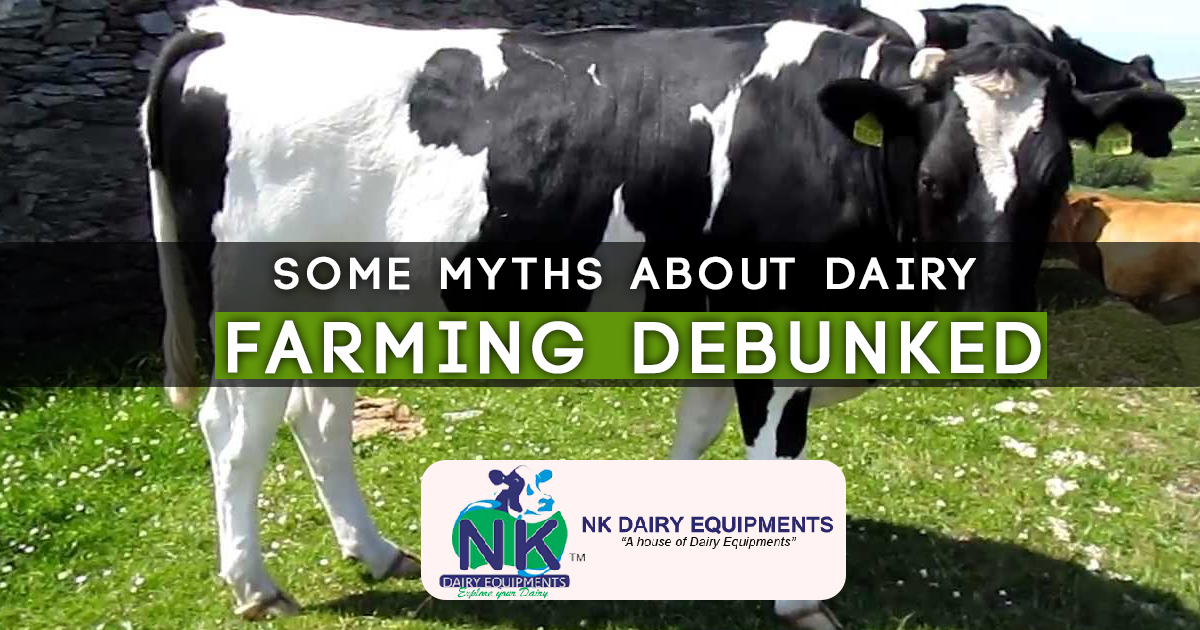 Some Myths About Dairy farming Debunked