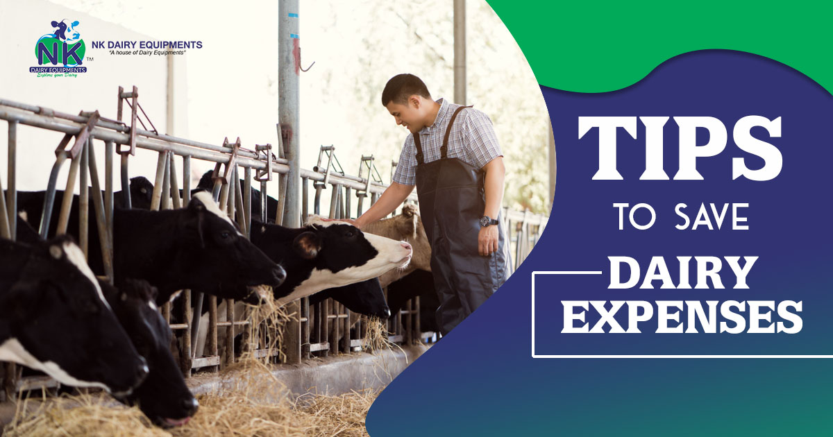 Tips to save dairy expenses