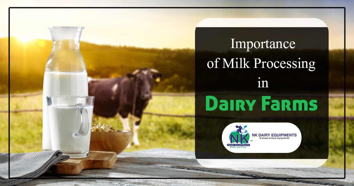 Importance of milk processing in dairy farms
