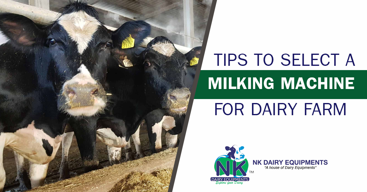 Tips to select a milking machine for dairy farm