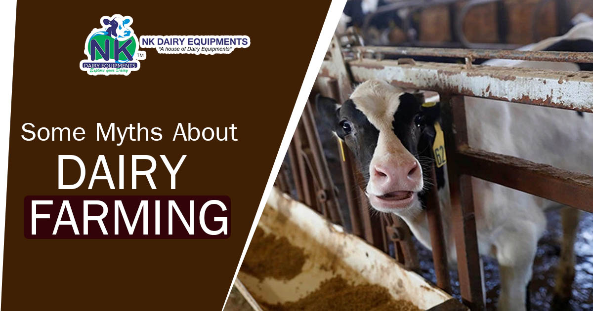 Some Myths about dairy farming