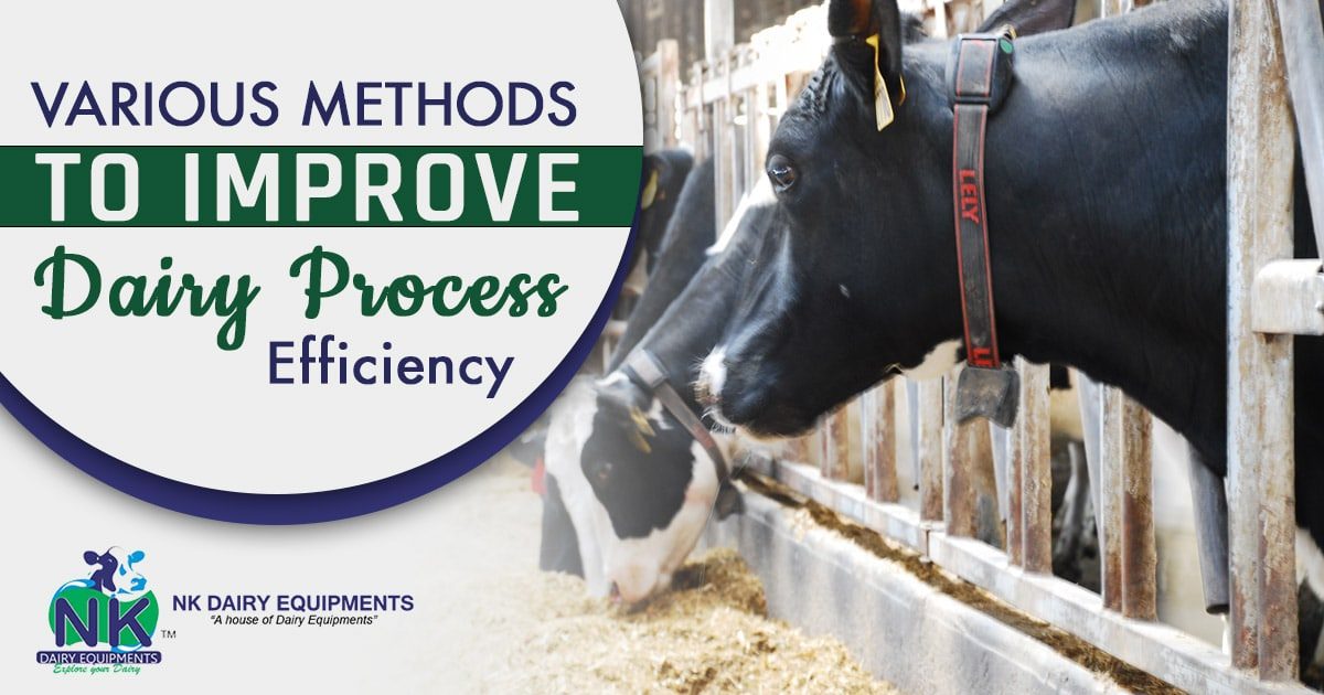 various methods to improve Dairy Process Efficiency
