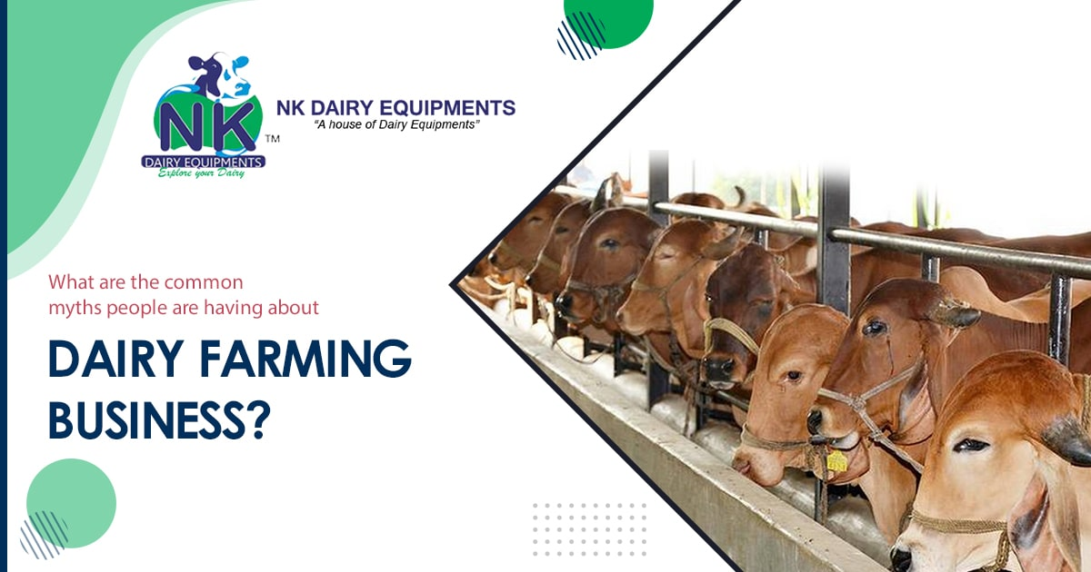 What are the common myths people are having about Dairy farming business