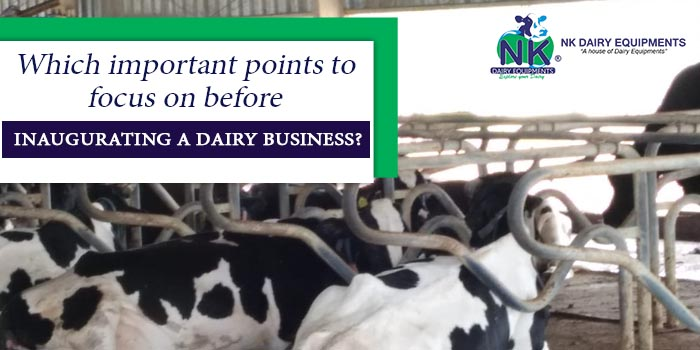 Which important points to focus on before inaugurating a dairy business