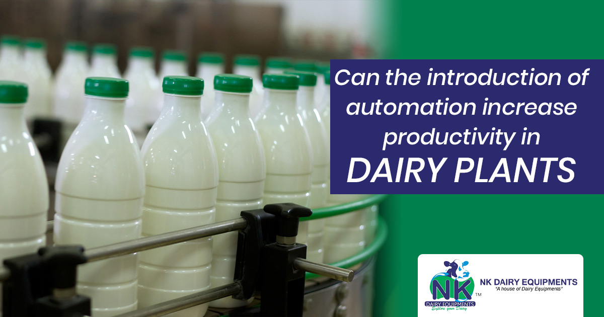 Can the introduction of automation increase productivity in dairy plants?